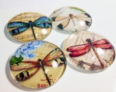 Shabby Chic - Jumbo Glass Magnets - Fridge Magnets - Dragonflies - Office Glass Magnets - Home Office Magnets - Whiteboard Magnets - Mag415