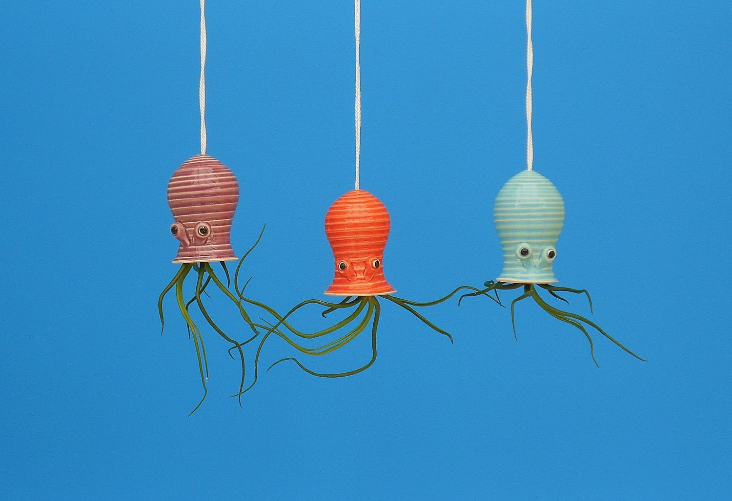 Air Plant Small Octopus Hanging Planter Spiral by CindySearles - photo#45