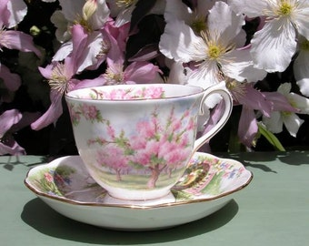 Beautiful Vintage 1935 Royal Albert Cup and Saucer Blossom Time