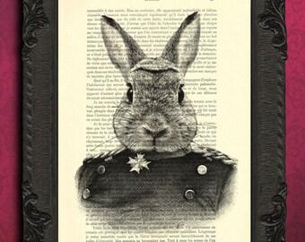 rabbit portrait print animals in clothes print rabbit in suit art