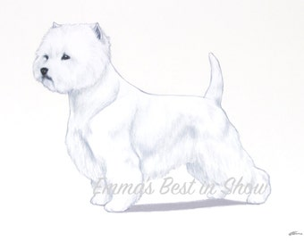 West Highland White Terrier Westie Dog - Archival Original Fine Art Print - AKC Best in Show Champion - Breed Standard - Terrier Group