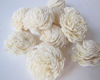 Ivory Mini Chorki Sola Flowers - Set of 15, Cream Sola Flowers, Mini Chorki Sola Flowers, Sola Flower, Wood Sola Flowers, Craft Flowers