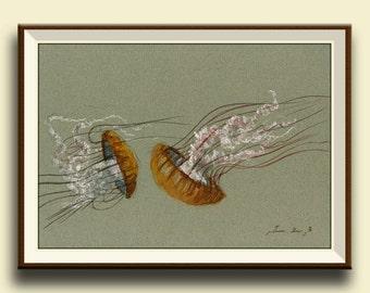 PRINT-Jellyfish animal- Jellies swimming - nautical decor- jelly fish wall art- Art Print by Juan Bosco
