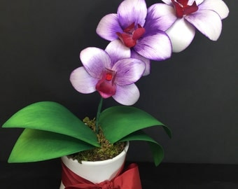 Orchids, Purple and White in White Vase