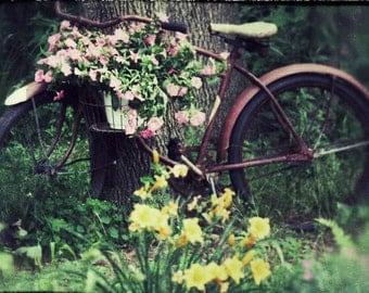 Photo Print - Vintage Bicycle, Flower Basket, Vintage Expired Film Photos