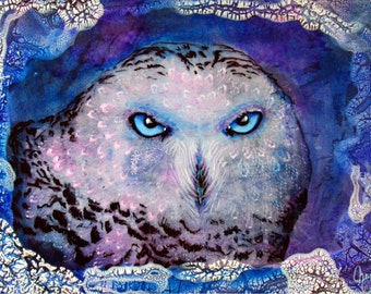 "Owl Art , Owls , Limited Edition Print , Colorful Owl ""Ole Blue Eyes"""