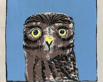 Little Owl screen print