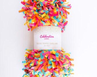Rainbow Tissue Fringe Garland, 25 Feet - by Celebration Lane
