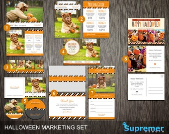 Halloween Marketing Template Set - Photography Mini Sessions, Price List, dvd cd Templates & More - Photoshop PSD MST007