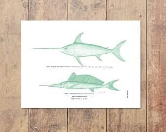 Swordfish Art in Green - Fishing Print Ocean Print Gifts For Dad Nautical Print Home Decor Nautical Decor Beach Decor Ocean Wall Decor