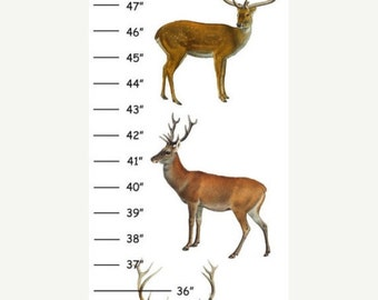 Personalized Woodland Deer Canvas Growth Chart