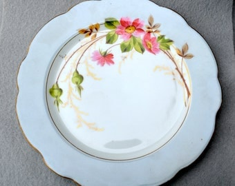 Hand Painted Plate Vintage