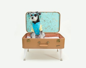 FREE SHIPPING - Upcycled Vintage Suitcase Pet Bed for a Dog or Cat that is also a Side Table or Coffee Table