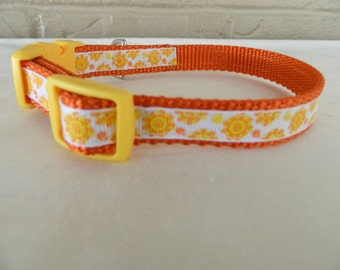 Mini Sunshines Dog Collar