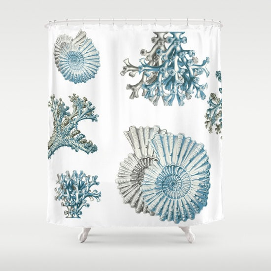 Coral And Shell Shower Curtain Ocean Shower Curtain Gray