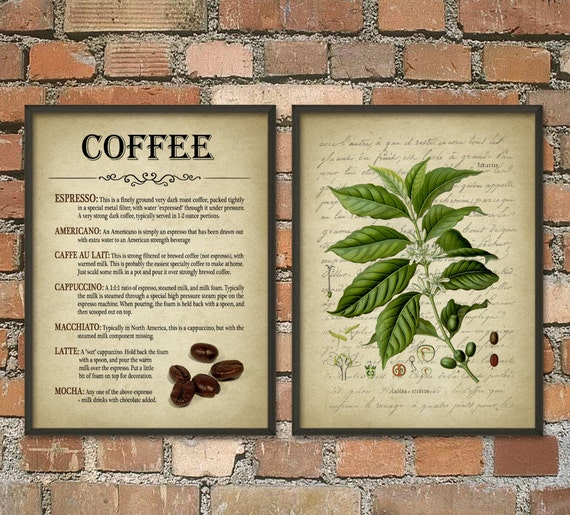 Coffee Wall Art Poster Set Of 2 Coffee Types Antique
