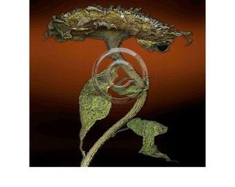 Sunflower 5 Digital print, 8x8 inch image on 11x14 rag paper