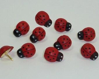 Decorative Push Pins, Ladybird Drawing Pins, Cork Board Pins, Thumbtacks, Pretty Drawing Pins, Pin Board Pins, Map Pins, Teachers Gift