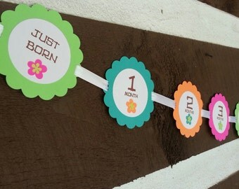 6ft, Luau Baby's First Year Photo Banner!! 1st Year