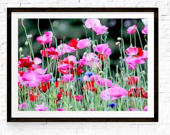 Poppies Print, Flowers Art, Wildflowers Print, Pink and Red Art, Floral Decor, Garden Art, Garden Decor, Gift for Girlfriend, Flower Photos