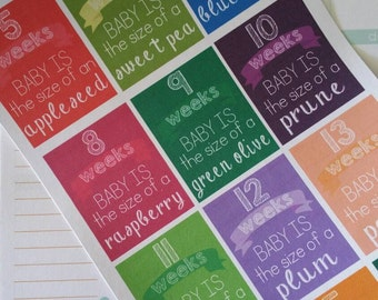 Week by Week Pregnancy Stickers for your Planner - Weeks 5-40