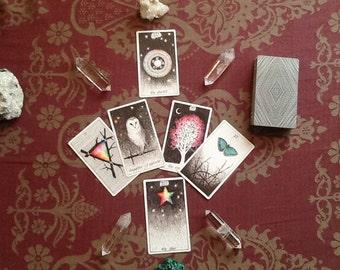 Daily Tarot Draws (7 Days)