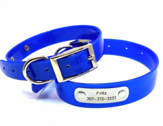 Waterproof Dog Collar With Nameplate