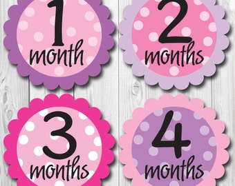 baby  month stickers, pinks and purples, monthly baby girl stickers, months 1-12, milestone stickers, photo op baby sticker, lavender