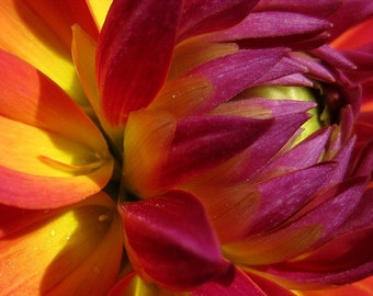 Sunset Flower Cross Stitch Pattern