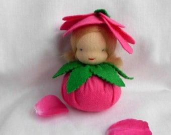 Flower child - little rose