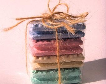 Custard Cream Magnet Set in Pastel Colours
