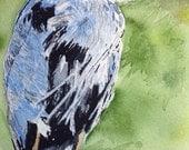 Watercolor,Watercolor Pai...