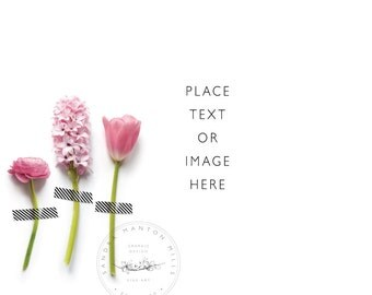 Styled Desktop   3 Pink Flowers in a row   Product Photography   digital Image