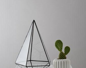 Teardrop Geometric Terrarium