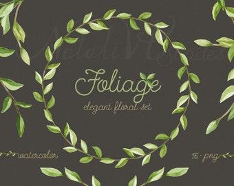 Foliage. Elegant floral set. Leaves and branches. Laurels watercolor. Digital Clipart