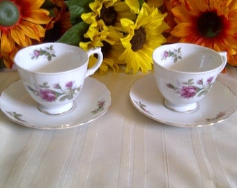 Hand Painted In Japan Cup And Saucer Set. Hand Painted Moss Rose Design.