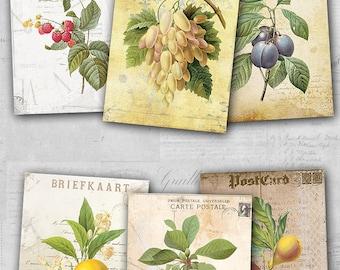 75% OFF SALE Digital Image Fruit Cards - Digital collage sheet, Printable Download, Digital Tags, Digital Vintage, ATC Card, Vintage Cards