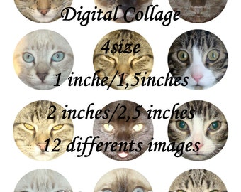 Cats Eyes, Digital Collage Sheet, Ready to print, 1/1.5/2 and 2.5 inches Instant Download