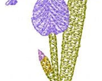 SFancy Woodland Iris 4 x 4