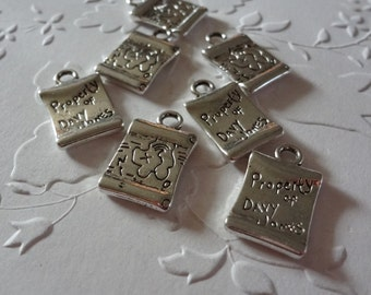 6 - 3D - Davy Jones Pirate Map Charms