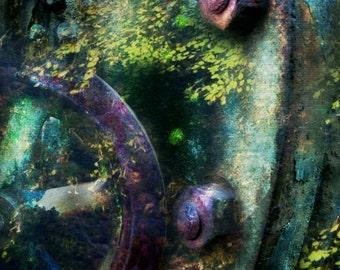 8x12 Nautilus, Tale of the Invincible Machine, Fine Art Photography
