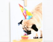 Have Your Cake and Eat It Pug Birthday Card - Dog Birthday Card - Birthday Greeting - Pug Card - All You Need is Pug Card