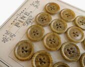Antique Vegetable Ivory Buttons - 6 Speckled Sew Through