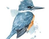 Kingfisher Watercolor Print, 8x10 bird wall art painting