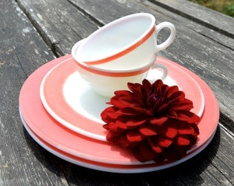 Vinage Pyrex Flamingo Red Milk Glass Dinnerware Tea Cups Dinner Plates Dessert Plate