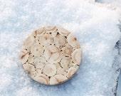Juniper Wood Round Trivet, Natural Handmade Coaster, Rustic Home Decor, Wooden Kitchen Utensil, Untreated Wood