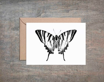 Butterfly Note Card Set of 8 Blank Cards With Envelopes Vintage Illustration A2 Greeting Cards