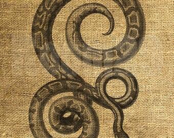INSTANT DOWNLOAD Vintage Snake Illustration - Download and Print - Image Transfer - Digital Sheet by Room29 - Sheet no. 1244