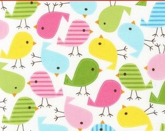 "LAMINATED Cotton  - Chicks Anne Kelle Urban Zoologie - Robert Kaufman, 56"" Wide, BPA & PVC Free"