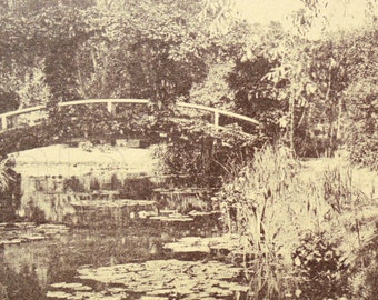 Unused French Postcard - Claude Monets Garden, Giverny, France